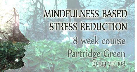 img mindfulness based stress reduction horsham